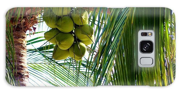 Coconuts Galaxy Case