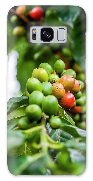 Coffee Plant Galaxy Case