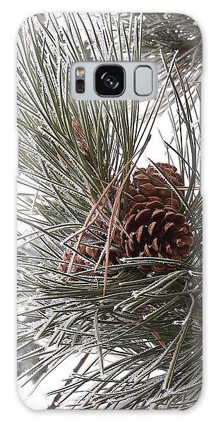 Cold Pine Galaxy Case