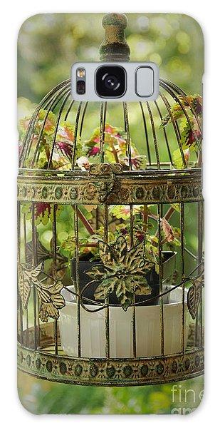 Coleus In Vintage Birdcage Galaxy Case