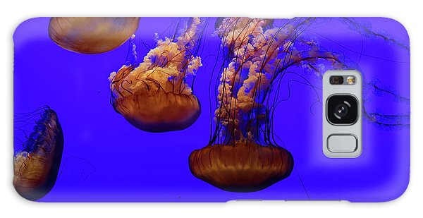 Collection Of Jellyfish Galaxy Case