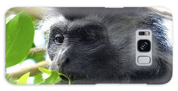 Colobus Monkey Eating Leaves In A Tree Close Up Galaxy Case