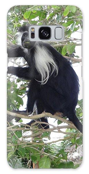 Exploramum Galaxy Case - Colobus Monkey Eating Leaves In A Tree by Exploramum Exploramum