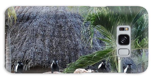 Exploramum Galaxy Case - Colobus Monkey Resting On A Wall by Exploramum Exploramum