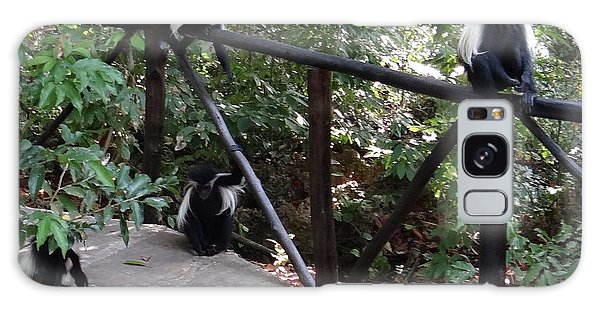 Exploramum Galaxy Case - Colobus Monkeys At Sands Chale Island by Exploramum Exploramum