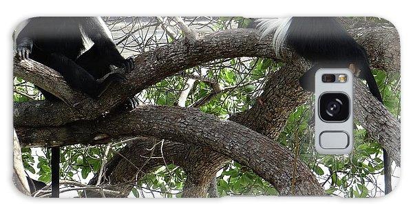 Exploramum Galaxy Case - Colobus Monkeys Sitting In A Tree by Exploramum Exploramum