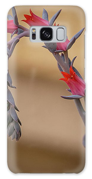 Color And Curve Galaxy Case