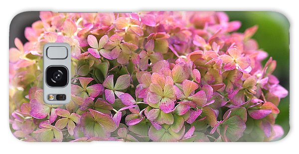 Color-changing Little Lime Hydrangea Galaxy Case by Rona Black