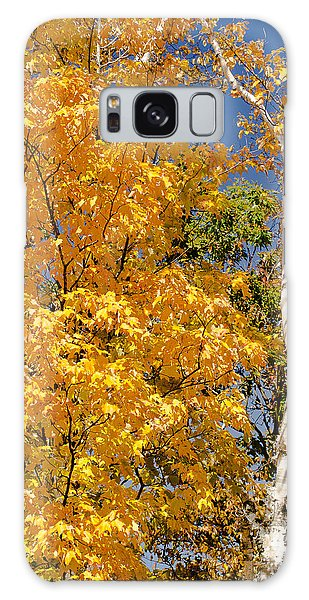 Color In The Trees Galaxy Case