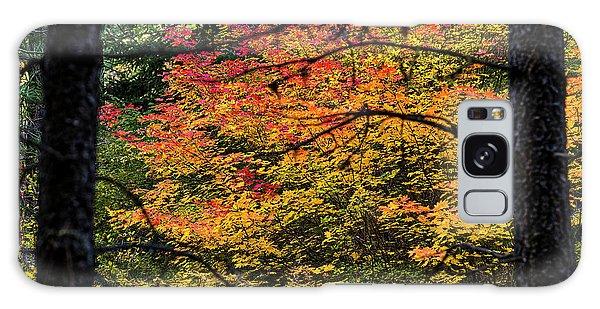 Cascade Mountain Range Fall Color Galaxy Case