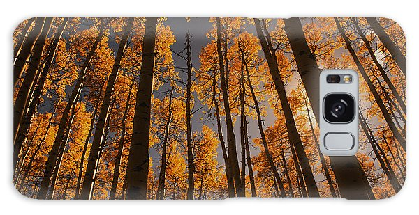 Colorado Aspens Galaxy Case