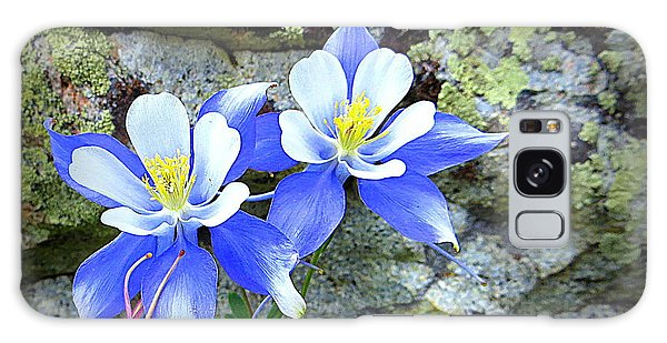 Colorado Columbines Galaxy Case by Karen Shackles