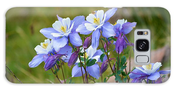 Galaxy Case featuring the photograph Colorado Columbines by Kate Avery