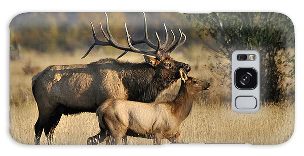 Colorado Elk  Galaxy Case by Nava Thompson