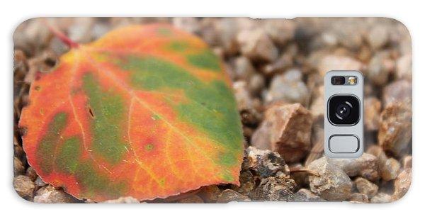 Colorado Fall Colors Galaxy Case