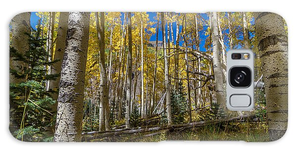 Colorado Fall Hike In The Aspens Galaxy Case by Michael J Bauer