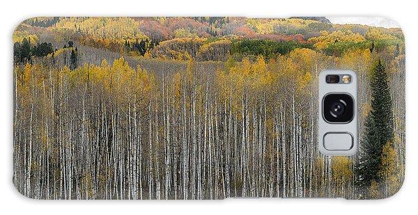 Colorado Splendor Galaxy Case