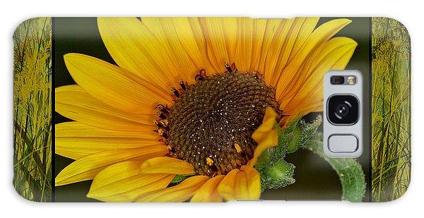 Colorado Sunflower Galaxy Case