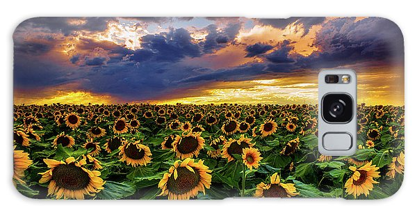 Colorado Sunflowers At Sunset Galaxy Case