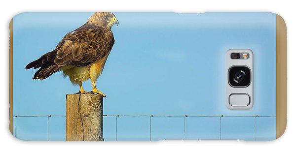 Galaxy Case featuring the photograph Colorado Swainson's Hawk Perched by John De Bord