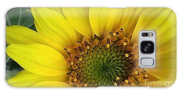 Colorado Wildflower Sunshine  Galaxy Case