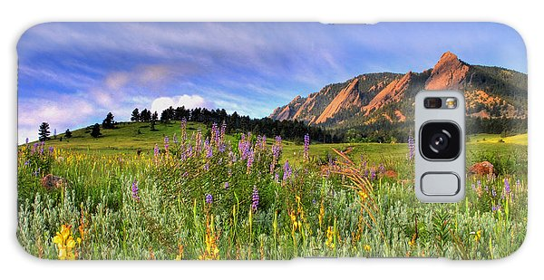 Landscape Galaxy Case - Colorado Wildflowers by Scott Mahon