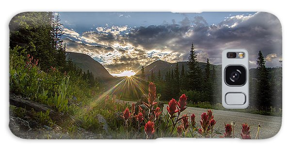 Colorado Wildflowers Under Evening Sun Galaxy Case