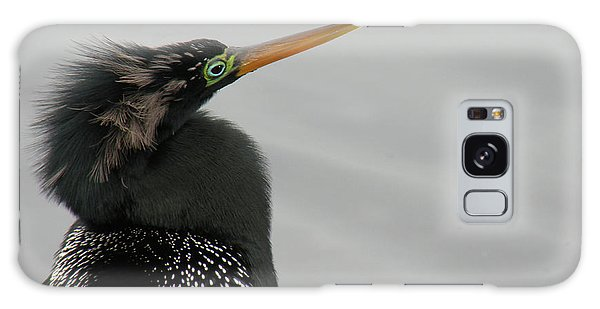 Colorful Anhinga Galaxy Case