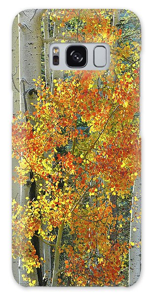 Colorful Aspen Along Million Dollar Highway Galaxy Case