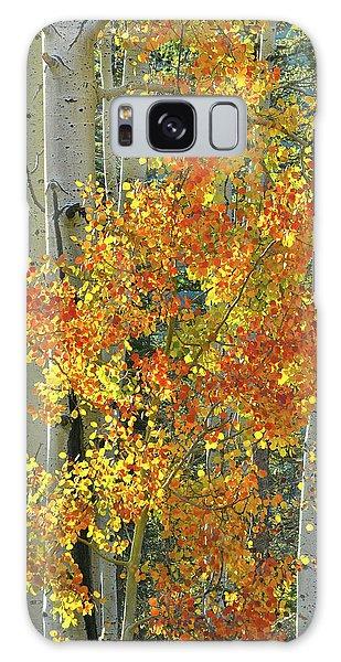 Colorful Aspen Along Million Dollar Highway Galaxy Case