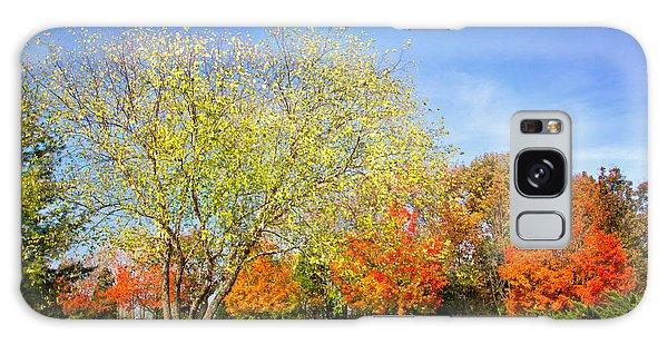 Colorful Backyard Scene Galaxy Case