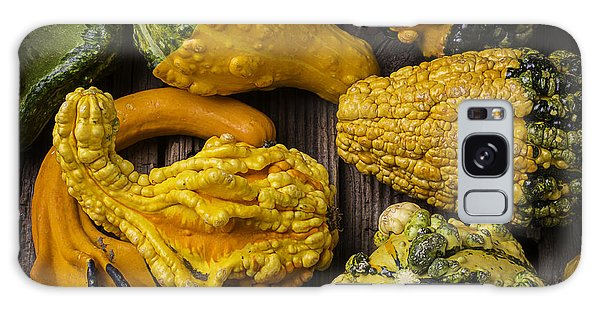 Gourd Galaxy Case - Colorful Gourds by Garry Gay