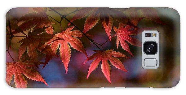 Colorful Japanese Maple Galaxy Case