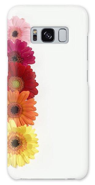 Colorful Row Of Gerbera Daisies Galaxy Case