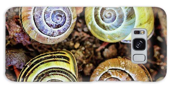Colorful Snail Shells Still Life Galaxy Case