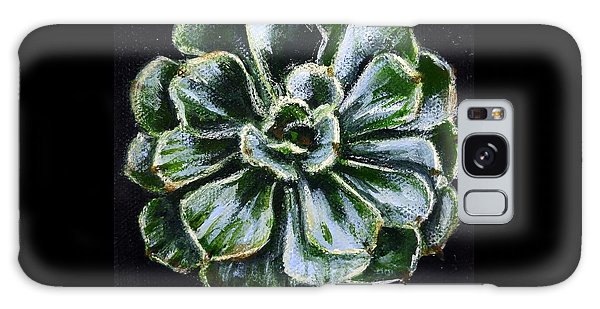 Colorful Succulent Galaxy Case