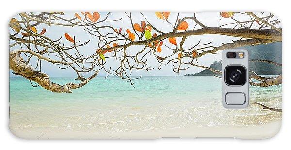 Colorful Tree North Shore Galaxy Case