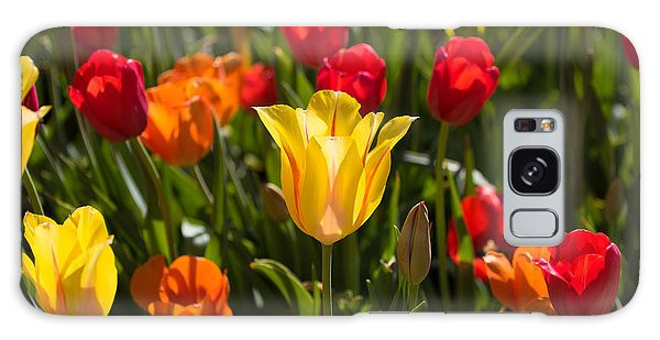 Colorful Tulips Galaxy Case