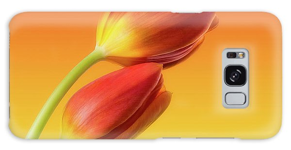 Flora Galaxy Case - Colorful Tulips by Wim Lanclus