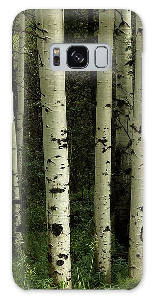 Galaxy Case featuring the photograph Colors And Texture Of A Forest Portrait by James BO Insogna