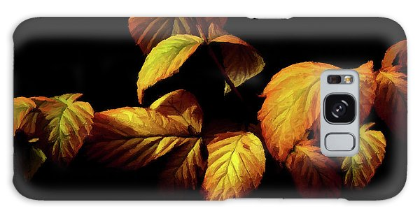 Colors Of Autumn Memories  Galaxy Case by David Dehner