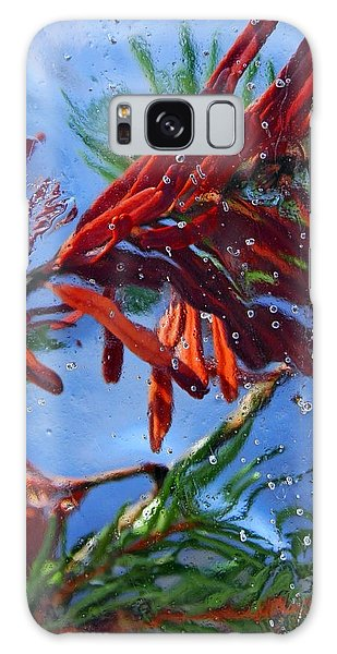 Colors Of Nature Galaxy Case