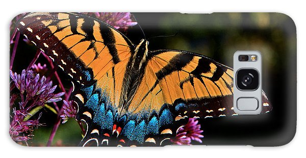 Colors Of Nature - Swallowtail Butterfly 004 Galaxy Case by George Bostian