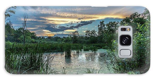 Columbia Marsh Sunset Galaxy Case