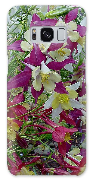 Columbine Galaxy Case
