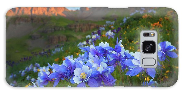 Columbine Sunrise Galaxy Case