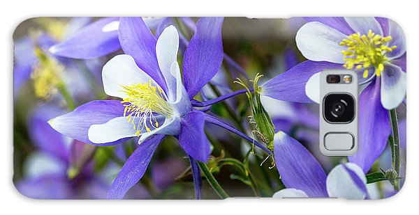 Columbines Galaxy Case