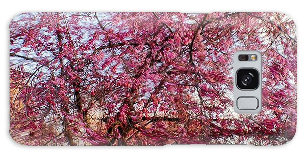 Columnar Sargent Cherry 1 Galaxy Case