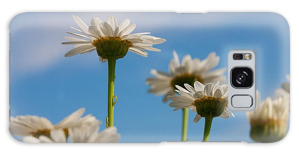 Coming Up Daisies Galaxy Case