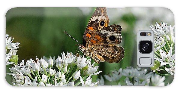 Common Buckeye Butterfly Galaxy Case